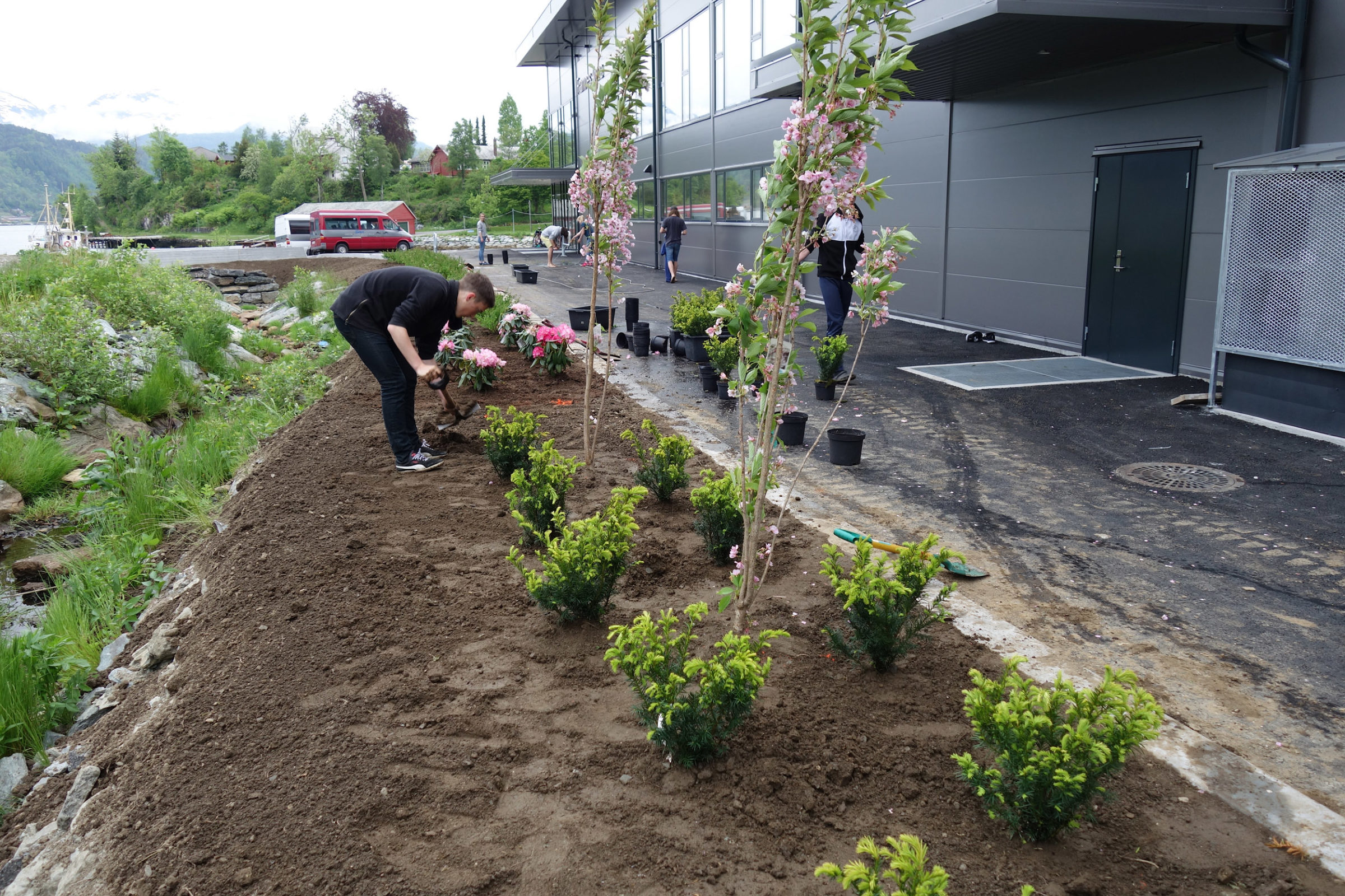 Elevar deltar i planting rundt hallen